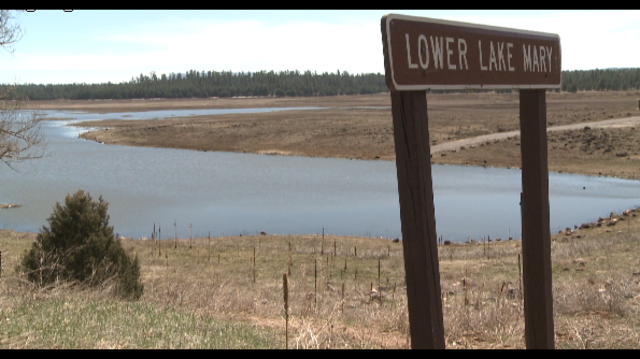 Thousand of fish die at flagstaff lake for Fishing in flagstaff