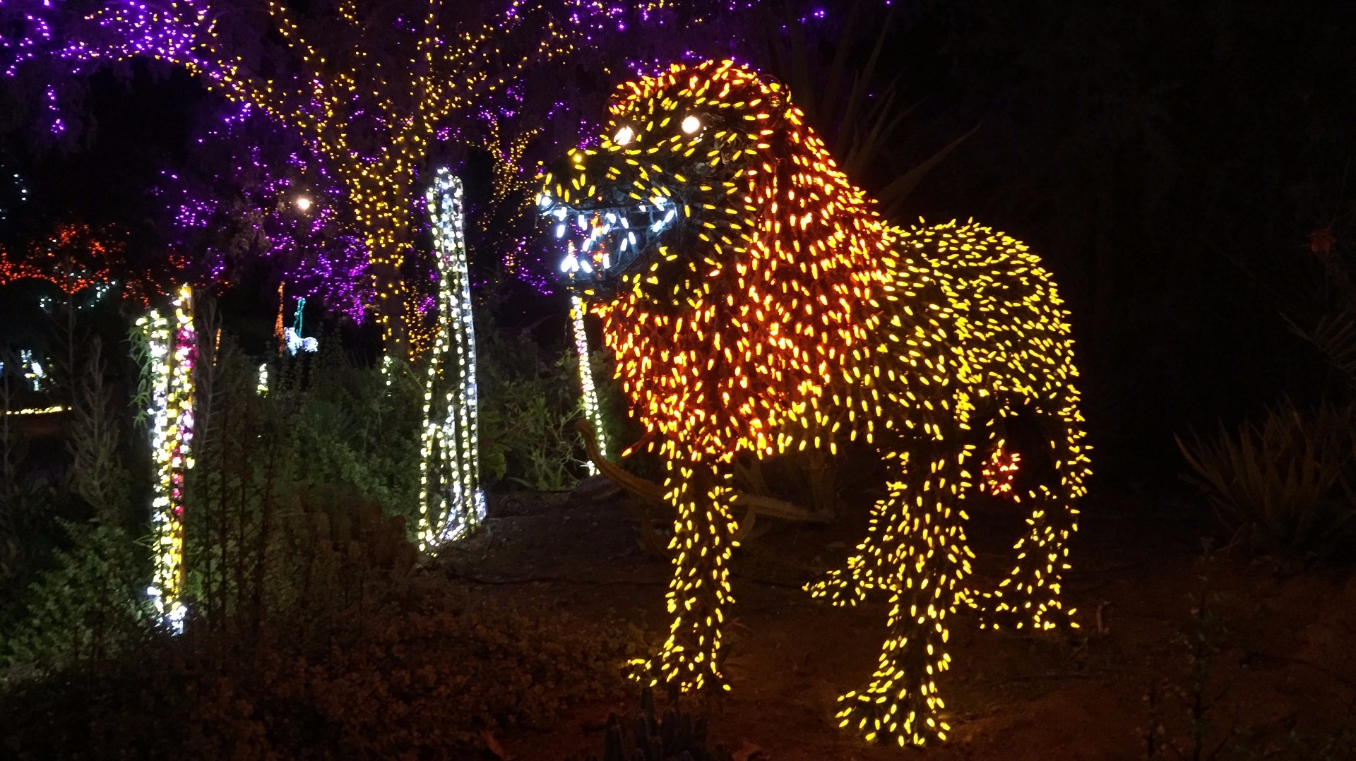 Phoenix zoo lights discount coupons