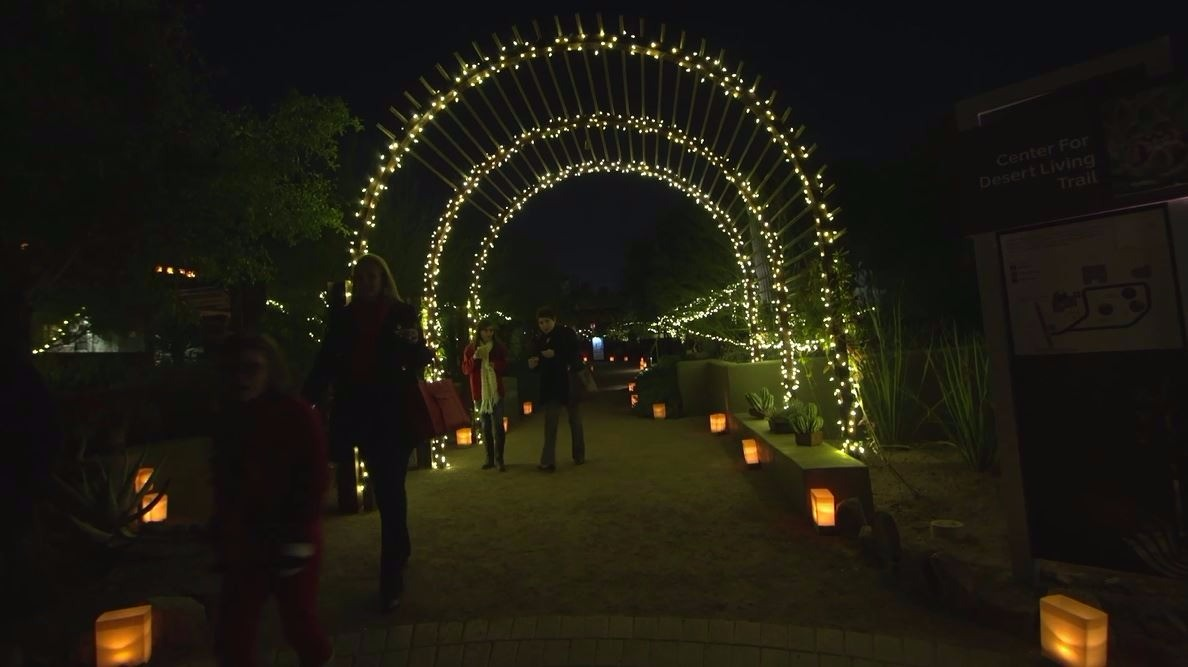 12news.com | U0027Luminariasu0027 Lights Up Desert Botanical Garden With Magical  Glow