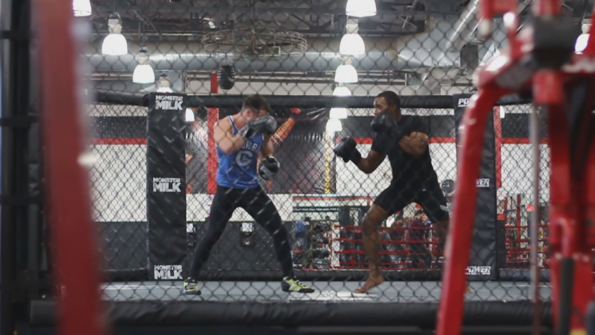 mesa mma fighter set for fight at celebrity theatre next week