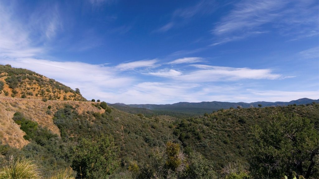 12news.com | Prescott National Forest to enforce fire ...
